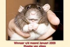 jan2009
