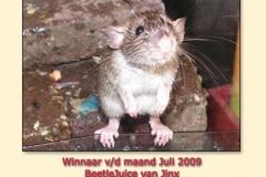 juli2009