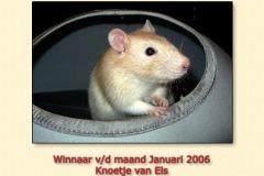 jan2006