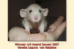 jan2007