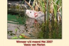 mei2007