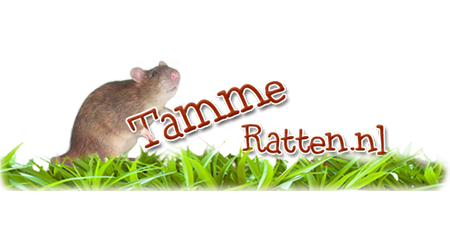 TammeRatten.nl